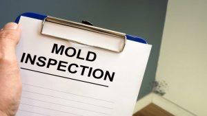 A Mold Inspection Clipboard - Mold Inspection Services - SERVPRO Of West Pensacola - 3345 Addison Dr, Pensacola, FL 32504 - 850 469 1160 -servprowestpensacolafl.com